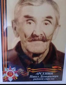 Арсенин Павел Демьянович