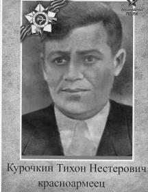 Курочкин Тихон Нестерович
