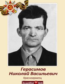 Герасимов Николай Васильевич