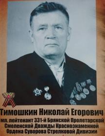 Тимошкин Николай Егорович
