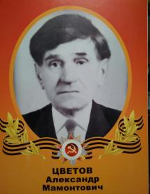Цветов Александр Мамонтович