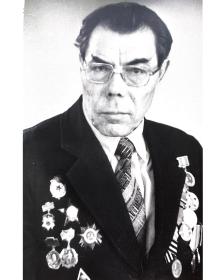 Радаев Николай Петрович