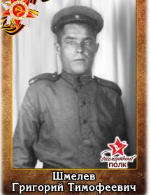 Шмелев Григорий Тимофеевич