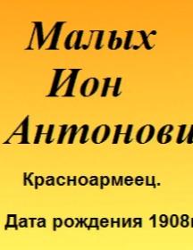 Малых Ион Антонович