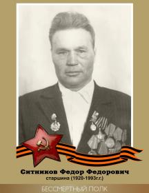 Ситников Федор Федорович