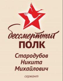 Стародубов Никита Михайлович