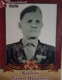 Воронов Ермил Иванович