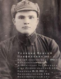 Телицин Моисей Панфилович
