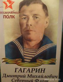 Гагарин Дмитрий Михайлович