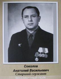 Соколов Анатолий Васильевич