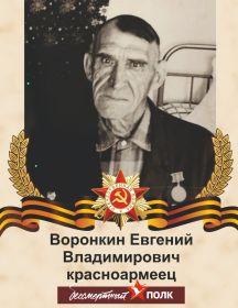 Воронкин Евгений Владимирович