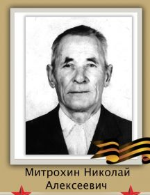 Митрохин Николай Алексеевич