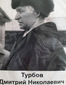 Турбов Дмитрий Николаевич