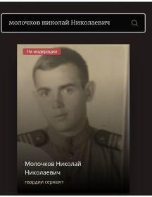 Молочков Николай Николаевич