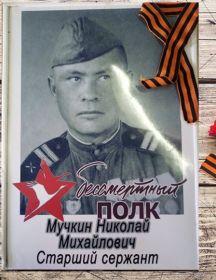 Мучкин Николай Михайлович
