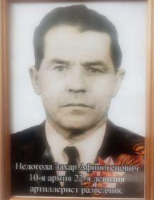 Недогода Захар Афиногенович