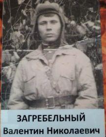 Загребельный Валентин Николаевич