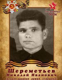 Шереметьев Николай Иванович