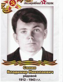 Сонин Владимир Николаевич