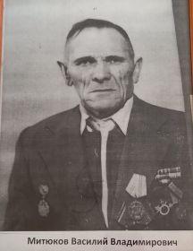 Митюков Василий Владимирович