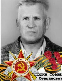 Полин Степан Степанович
