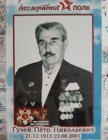 Гузей Петр Николаеаич