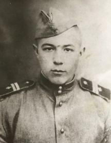 Трубицын Николай Ильич