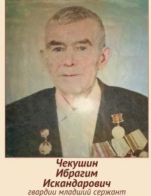 Чекушин Ибрагим Искандарович