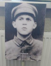 Чудаков Андрей Павлович