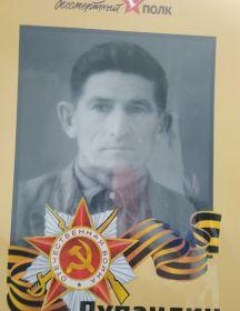 Лупандин Николай Ермолаевич