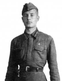 Мартынюк Николай Петрович