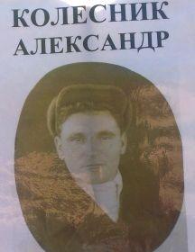 Колесников Александр Григорьевич