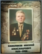 Камоликов Николай Александрович