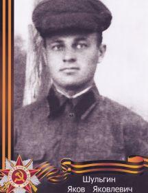 Шульгин Яков Яковлевич