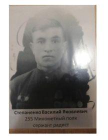 Степаненко Василий Яковлевич