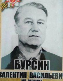 Бурсин Валенитин Васильевич