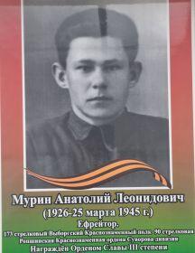 Мурин Анатолий Леонидович