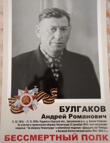 Булгаков Андрей Романович