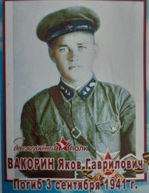 Вакорин Яков Гаврилович