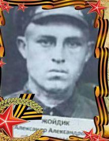 Жойдик Александр Александрович