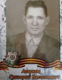 Агарков Григорий Васильевич