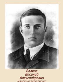 Волков Василий Александрович