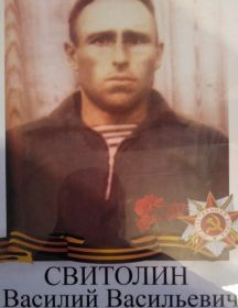 Свитолин Василий Васильевич