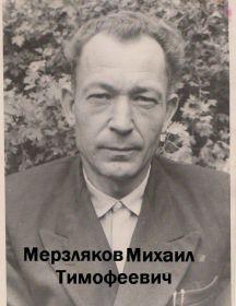 Мерзляков Михаил Тимофеевич