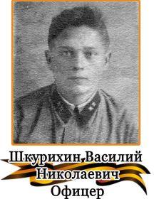 Шкурихин Василий Николаевич