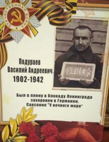 Подураев Василий Андреевич