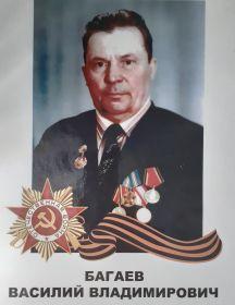 Багаев Василий Владимирович