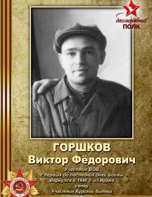 Горшков Виктор Фёдорович