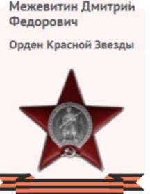 Межевитин Дмитрий Фёдорович
