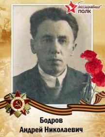 Бодров Андрей Николаевич